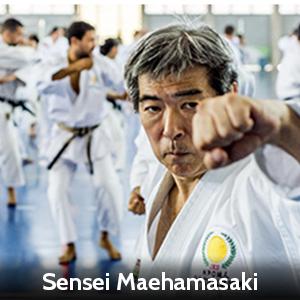 Sensei Maehamasaki