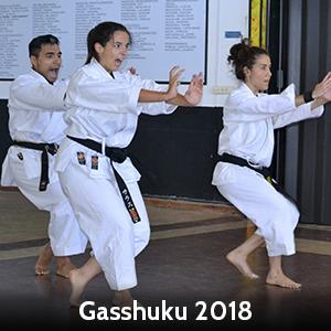Gasshuku2018