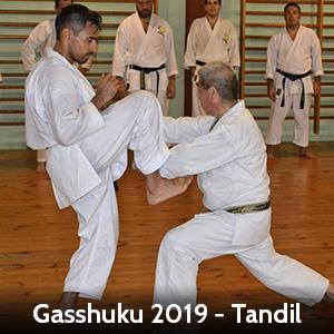 gasshuku2019